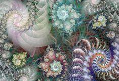 Google Image Result for http://www.linesandcolors.com/images/2008-01/fractal_450.jpg