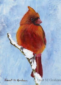 small format painting images | Red Cardinal ACEO in acrylics