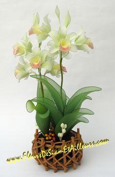 Orchidée Cymbidium verte