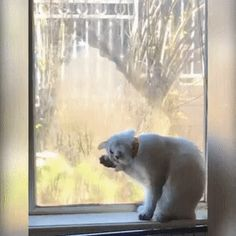 """""""So Boring...Nothing's Going On Out There.."""""""