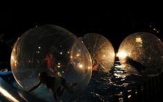 Attend a zorb pool party