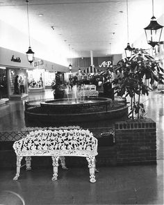 Town and Country Mall, Overland, Mo St Louis County, Vintage Country, French Country, Over The Bridge, St Louis Mo, Town And Country, Back In The Day, Missouri, Mall