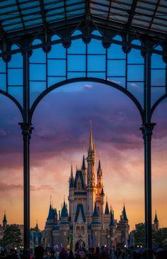 Tokyo Disneyland Winter Trip Report – Part 4