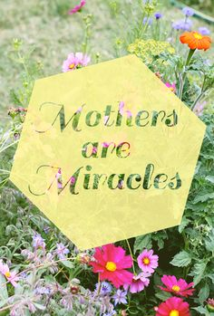 Mothers Are Miracles - Words of encouragement for mamas everywhere.