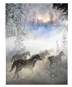 """""""WILD HORSES IN THE WINTER STORM"""" by louisevegasgirl ❤ liked on Polyvore featuring art"""