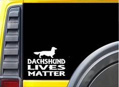 Dachshund Lives Matter Sticker k164 6 inch long hair dog ... https://www.amazon.com/dp/B01M6BY9JQ/ref=cm_sw_r_pi_dp_x_GqPNybW2N0T22