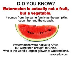 What's your favorite way to eat watermelon? Share with us! Veggies are Healthy @ http://www.facebook.com/movacado
