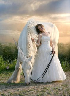 Shop White Horse with Bride Postcard created by WildlifeEarth. Personalize it with photos & text or purchase as is! Horse Girl Photography, Fantasy Photography, Photography Poses, Country Girl Photography, Cute Horses, Pretty Horses, Horse Love, Horse Photos, Horse Pictures