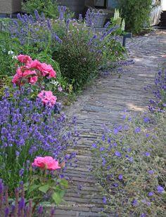Inside Outside, Pergola Patio, Garden Paths, Garden Inspiration, Pond, Landscape, Plants, Outdoor, Gardens