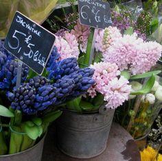 les fleurs <3