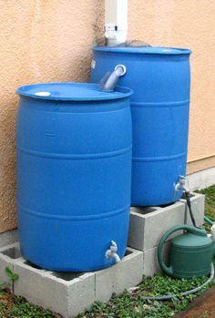 Make a rain barrel to conserve water and use on your garden Barrel Miami-Dade County - UF/IFAS Extension Garden Yard Ideas, Veg Garden, Backyard Projects, Outdoor Projects, Garden Projects, Garden Water, Rain Barrel System, Water Collection System, Water Barrel