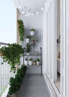 Small balcony ideas, balcony ideas apartment, cozy balcony design, outdoor balcony, balcony ideas on a budget Small Balcony Decor, Small Balcony Garden, Small Balcony Design, Balcony Plants, Outdoor Balcony, Balcony Ideas, Terrace Garden, Balcony Railing, Balcony Gardening