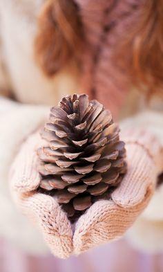 radostina_photography_hands_pine_cones.png