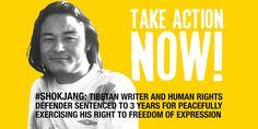 Stav lidských práv v Číně v roce 2015 (oficiální zpráva Amnesty International)