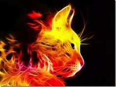fractal animal   When Light makes art, Illuminate Colorful Animal Portraits Made by ...
