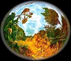 http://fineartamerica.com/featured/1-global-warmth-randy-rosenberger.html
