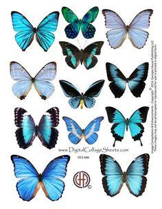 Butterflies DCS-686 - Digital Collage Sheets