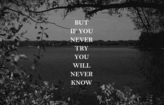 Pictures with Quotes: But if you never try you will never know