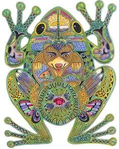 Frog by Sue Coccia