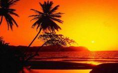 Vacanze a metà luglio nel Mar Rosso! #marrosso #marsalam #safaga