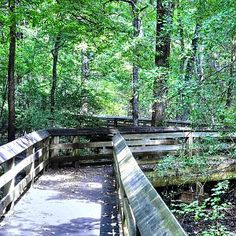 13 Southern Illinois Hiking Trails Ideas Southern Illinois Hiking Trails Hiking