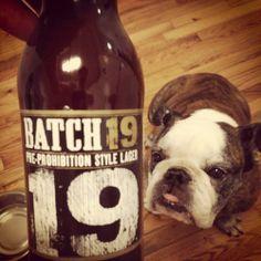 Saturday Nightz   BaggyBulldogs