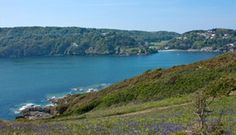 Salcombe Estuary taken from the Coastal Path between East Portlemouth & Gara Rock. Bluebell Time & Tide wait for no man, only nature. Photographer Mic