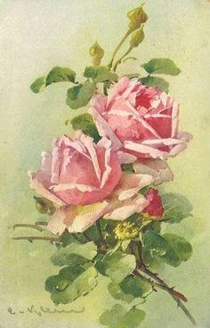 Catherine Klein postcards by corinne Images Vintage, Vintage Postcards, Vintage Art, Catherine Klein, Art Floral, Floral Illustrations, Botanical Illustration, Rose Pictures, Rose Art
