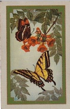 N36-USNN-US-NAMED-swap-playing-card-NAMED-BUTTERFLY-Summertime