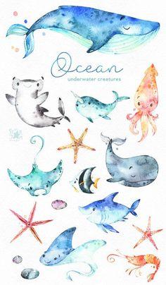Ozean. Unterwasser-Kreaturen. Aquarell ClipArt Haie Wal