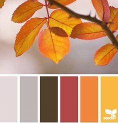 30 Thanksgiving Color Palettes