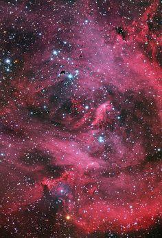 Running Chicken Nebula | IC 2948