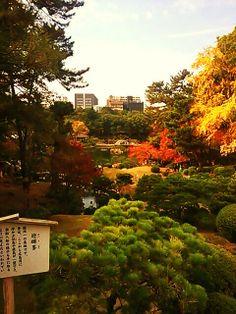 日本庭園、庭園/Japanese garden