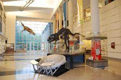 Martinsville, Virginia - Virginia Museum of Natural History.  October 2011