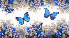 Fondos De Pantalla De Mariposas Butterfly Pictures, Butterfly Flowers, Blue Butterfly, Beautiful Butterflies, White Flowers, Beautiful Flowers, Butterfly Kisses, Butterfly Wall, Cross Paintings
