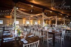 Chris & Meredith, Smokey Glen Farm, Maryland, Part 2 Wedding Reception Tables, Wedding Venues, Farm Wedding, Dream Wedding, Barbecue Wedding, Camping Theme, Wedding Styles, Wedding Ideas, Future House