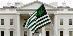 Get Fired Up And Fight For Freedom At The (FU) 4/22 Cannabis Rally