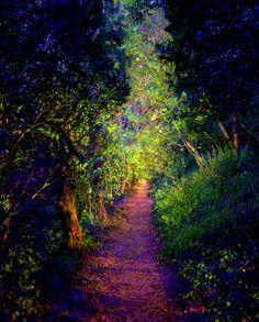 Light Painting Artist Dean Chamberlain | Light Painting Photography