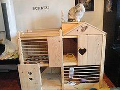 House rabbits can live in rabbit hutches, rabbit cages indoors and out.