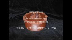 "Kaleidobox "" Rehearsal concert in the chocolate cake""  万華鏡匣「チョコレートケーキの中リ..."