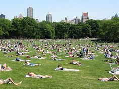 NYC. Manhattan. Sheep Meadow - Central Park in summertime.