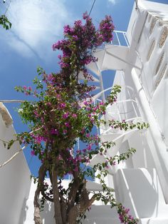 Climbing to paradise  Paros Island, Greece