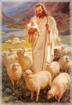 image of jesus the good shepherd - Bing Images Lord Is My Shepherd, The Good Shepherd, Première Communion, Pictures Of Jesus Christ, Jesus Christus, Jesus Art, Biblical Art, Lion Of Judah, Jesus Is Lord