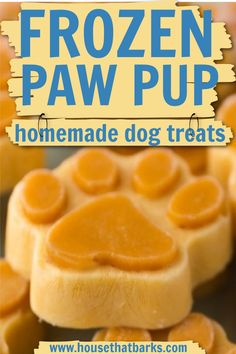 Frozen Dog Treats, Diy Dog Treats, Healthy Treats For Dogs, Pumpkin Dog Treats Homemade, Dog Pumpkin, Frozen Pumpkin, Pumpkin Treats For Dogs, Easy Dog Treat Recipes, Dog Food Recipes