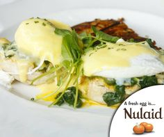 A classic eggs #Florentine is perfect for an indulgent weekend brunch, for full recipe - click here: http://ablog.link/5Kf. #Nulaid #FarmFresh