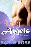 Sexy Angels Fantasy Erotic Snippets, an ebook by Sable Rose at Smashwords Free Romance Novels, My Romance, Super Powers, Bad Boys, Erotic, Angels, Fantasy, Rose, Sexy