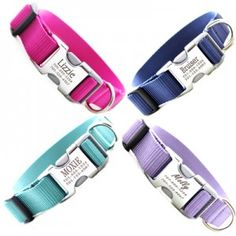cute collars for Penny