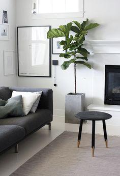 modern-indoor-plant-in-living-room.jpg 600×880 Pixel