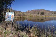 Barbara's Lake in Laguna Beach is the only natural lake in Orange County, CA.