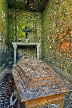Eerie casket in a room with green mossy walls, crucifix, cross, altar. Cemetery Headstones, Old Cemeteries, Cemetery Art, Graveyards, Abandoned Churches, Abandoned Mansions, Abandoned Places, Unusual Headstones, Last Exile